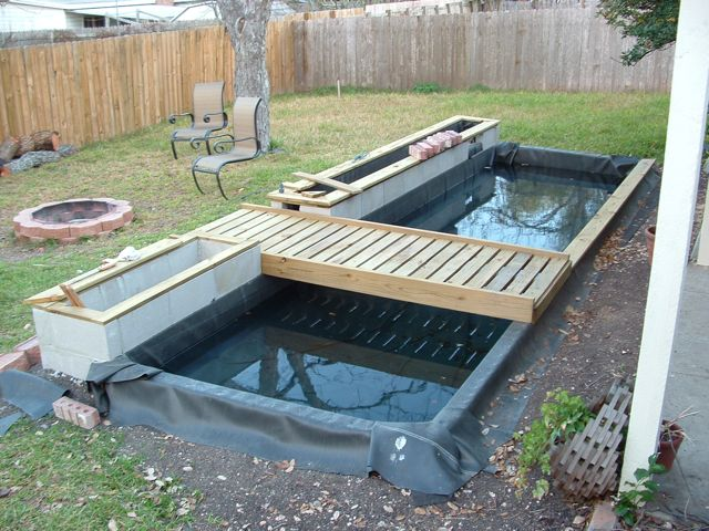 Blog jack palmer web multimedia for Koi pond size